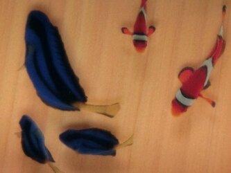 アクリル 金魚 アート 桧 「絆/kizuna」 こだわりの純日本製 ★ラッピング無料★ ファインディングドリー 3D金魚 ニモの画像