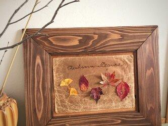 "【monokli.woody】""autumn leaves"" ウォルナットフレームの画像"