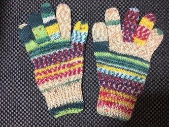 5本指手袋(Opal 2104)ver.2の画像