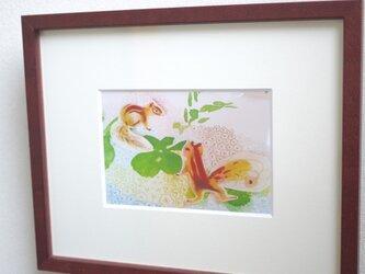 risuの画像