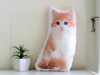 犬 猫 ペット ノルウェージャン クッション ぬいぐるみ インテリア メモリアル プレゼント オーダーメイド 写真 フワモコiの画像
