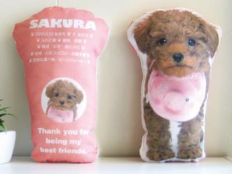 犬 猫 ペット トイプードル クッション ぬいぐるみ インテリア メモリアル プレゼント オーダーメイド 写真 名前 無地iの画像