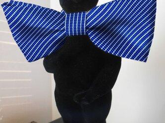 蝶ネクタイ レジメン3  ブルー の画像