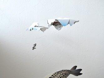 流氷とアザラシの画像