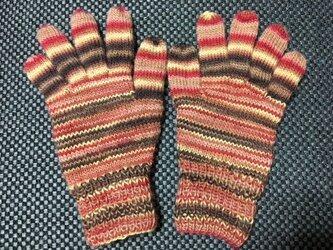 5本指手袋(ブラウン・レッド)の画像