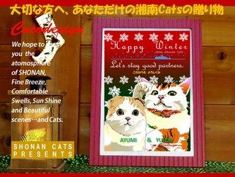 あなただけのセミオーダー!湘南Catsアニバーサリー・ペア・フレーム~お名前、お好きなメッセージお入れします~の画像