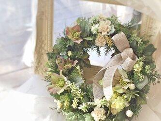 クリスマスローズと白いバラのリースの画像