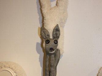 ANI MUFF' 鹿の画像