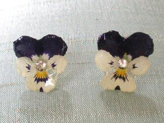 ビオラのお花ピアスの画像
