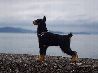羊毛フェルトの犬人形(ドーベルマン)の画像