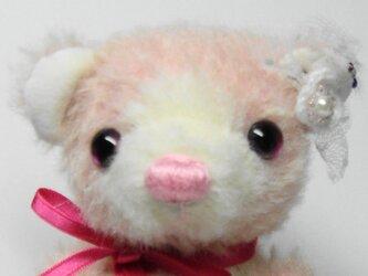 まめくま♡ピンクベビー 送料無料の画像