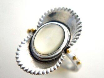 花貝のリングの画像