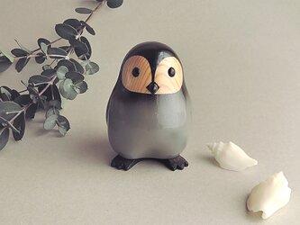こどもペンギンの画像