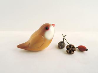 シナモン文鳥の画像
