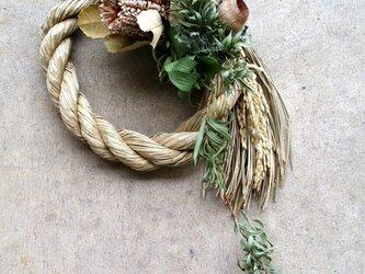 バンクシアとハゼの実のしめ縄飾りの画像