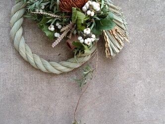 バンクシアのしめ縄飾りの画像