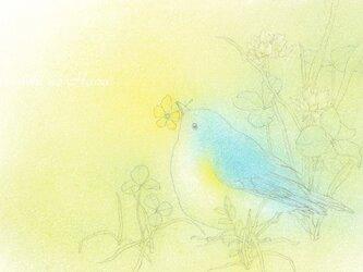 お好みポストカード3枚セット【A】あなたの幸せを思うの画像