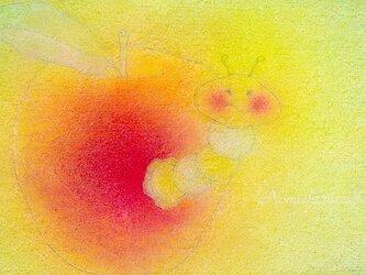 お好みポストカード3枚セット【B】りんご色の画像