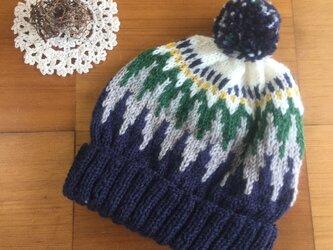 ロピー風帽子の画像