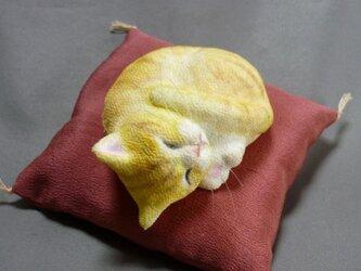 手乗り猫 アンモニャイト 茶トラ猫さん 絹の座布団付の画像