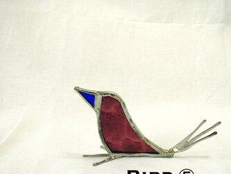 鳥 ⑤の画像