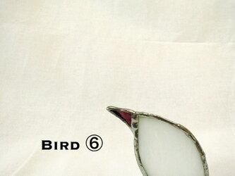鳥 ⑥の画像