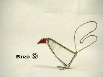 鳥 ⑨の画像