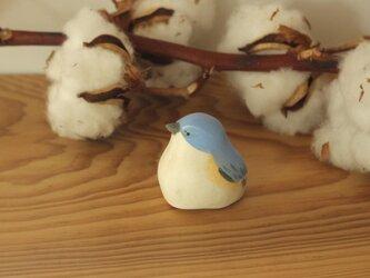 【暦鳥・冬】ルリビタキの画像