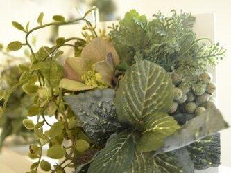 garden  Sの画像