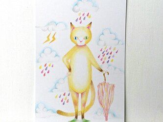 ネコとキャンディーレインの画像