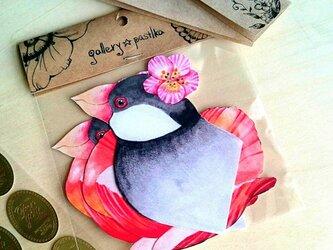 文鳥とひなげしの花の画像