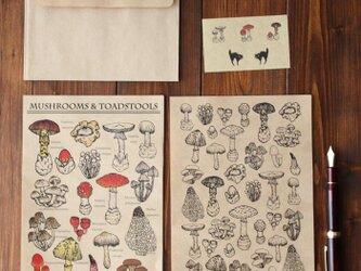 ●キノコ図鑑シリーズ●キノコと毒キノコのレターセット 13.CATS.WORKS×YO-COの画像