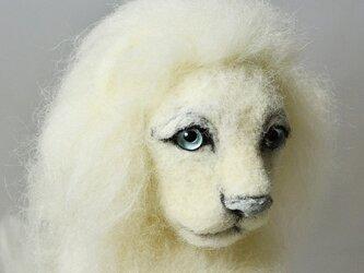 ホワイトライオン 2018の画像