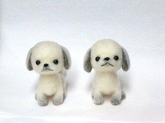 Cさま専用オーダーワンコ   シーズー犬 2作品セットの画像