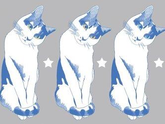 茶白猫のポストカード2種セット②の画像
