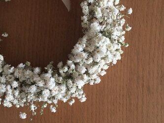 春待ちリース ふんわりカスミソウのリースを作りました。の画像