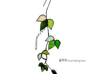 ステンドグラス アイビーA01121-Gの画像