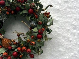 冬の窓辺リース 赤い実のほっこりリースの画像