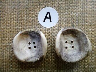 鹿角ボタン4穴25㎜2個セットの画像
