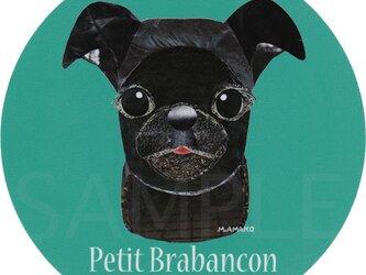 プチ ブラバンソン/黒《犬種名ステッカー/小型犬》の画像
