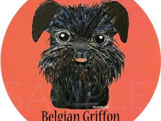 ベルジアン グリフォン《犬種名ステッカー/小型犬》の画像