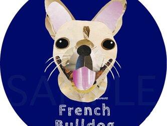フレンチ ブルドッグ/フォーン《犬種名ステッカー/小型犬》の画像