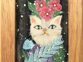 「猫の肖像」の画像