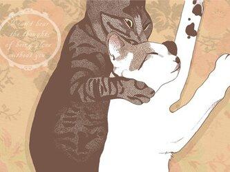 仲良し猫のポストカード2種セットの画像