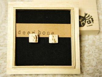 鹿の角のピアス*deer bone*の画像