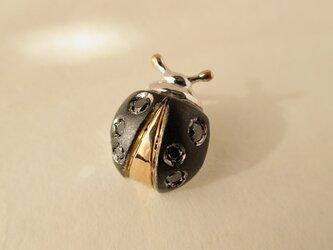 SV・K18PG Ladybird Black Dia tiny pinの画像