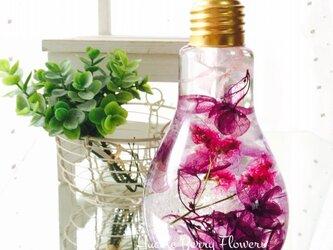 【新色】紫の雫 フラワーボトル ハーバリウムLsizeの画像