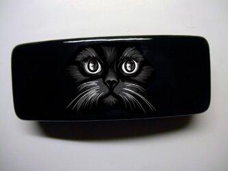 アートメガネケース(黒猫)【送料無料】の画像