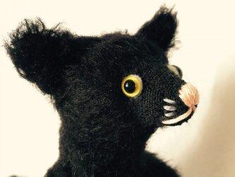 シャトン・トリュフ 子猫のぬいぐるみの画像