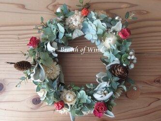 花と木の実のリース 8の画像